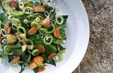 Salát ze špenátových listů se smetanou a česnekovými chipsy