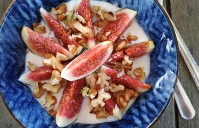 Řecký dezert - jogurt s fíky, ořechy a medem