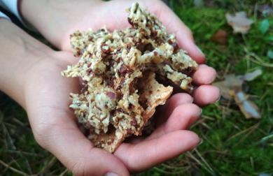 Domácí sýrové krekry s ořechy a semínky
