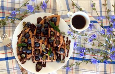 Perníkové nízkosacharidové vafle s čokoládovou omáčkou a borůvkami