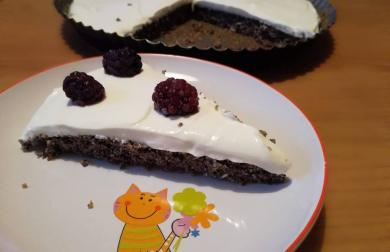 Rychlý makový koláč - nízkosacharidový
