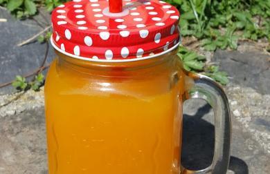 Rakytníková domácí limonáda